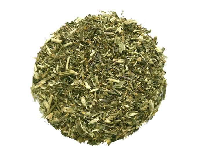 Goldrute (Solidago Virgaurea) (Bio)